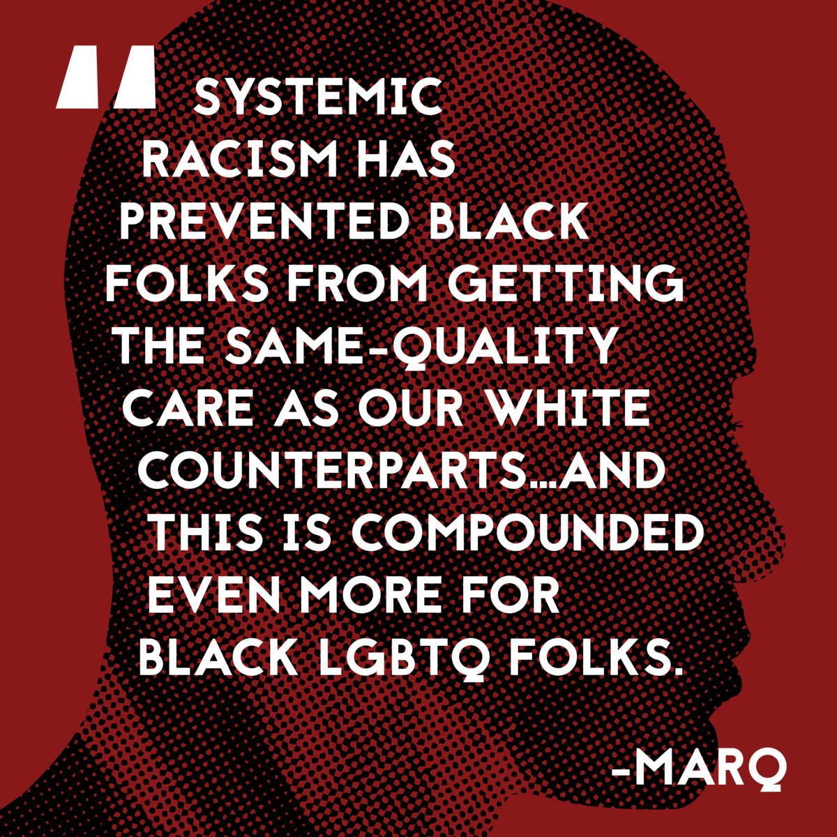 LGBTQ quote on racism